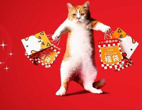 「くじ付きふてニャン福袋」をプレゼント!福袋は店頭やオンラインストアでも誰でも1,111円で購入可能