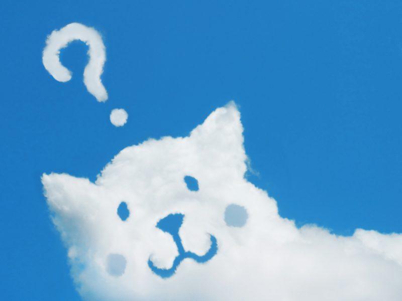 ホワイトプラン【R】【N】【i】の全てを伝授!
